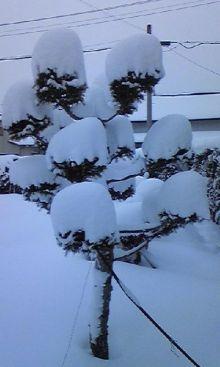 ノア流星群の神々-雪